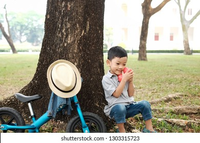 Portrait little kid 4 year old holding and taking care 2 red hearts. Kid parking his bike and sitting under the big tree in the park. Concept journey of love,  poppy love, I love you, valentine 's day