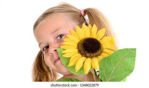 portrait of a little smiling girl with pigtails and sunflower