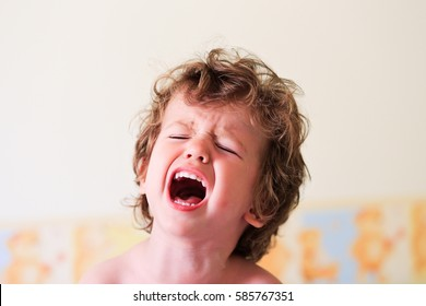 Portrait of a little toddler screaming. Upset baby boy kid crying. Shouting.
