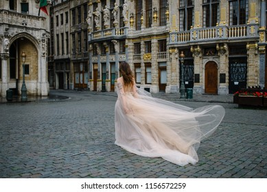 Portrait of a lovely young girl in a lush dress walking around the park and the Grand Palace(Brussels)