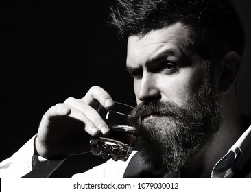 Portrait of man with thick beard. Macho drinking. Stylish rich man holding a glass of old whisky. Bearded gentleman drink cognac. Sipping finest whiskey. Black and white.