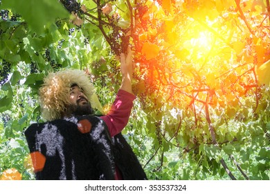 Portrait of man wearing traditional felt cloak and fur cap outdoor in the grape garden