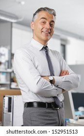 Portrait of a mature business man in office