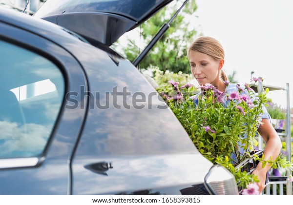 Portrait of mature gardener putting flowers on crate in car trunk for delivery