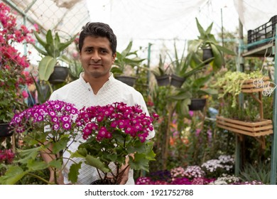 Portrait of a Mexican man working in nursery