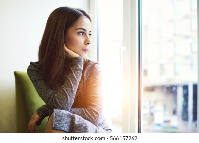 Portrait of mindful attractive young female getting inspired with sunny weather outdoors sitting in modern cafe interior near huge window and copy space area for your advertising looking away