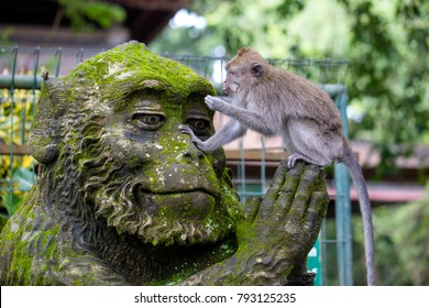 Portrait of a monkey sitting on a stone sculpture of a monkey at sacred monkey forest in Ubud, island Bali, Indonesia . Close up