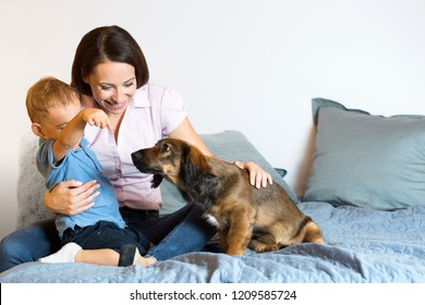 Portrait of mother and baby with their pet dog (real family).