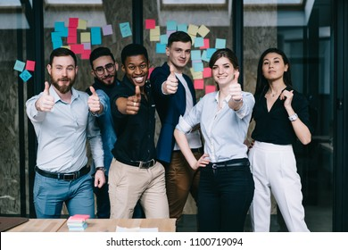 Portrait of multicultural team of happy office employees dressed in formal wear holding thumb up showing sign okay and success of collaboration standing against wall with colorful stickers in office