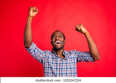 Portrait of nice handsome attractive cheerful glad positive guy wearing checked shirt showing breakthrough gesture holding fists raising hands up isolated over bright vivid shine red background