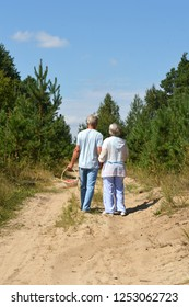 Portrait of a nice mature couple walking in summer park