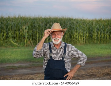 Portrait of old farmer with white beard in overall and with straw hat in corn field