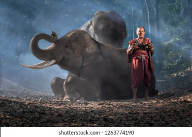 Portrait of The old man and elephants on blackground ,Vintage style. Surin Thailand.