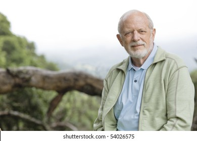 Portrait of an Old Man Sitting on a Treetrunk Looking Directly To the Camera
