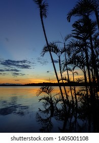 Portrait phot of sunset over Amazonian lagoon with silhouetted trees