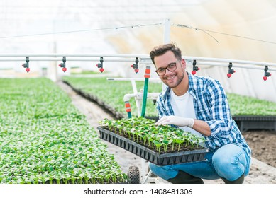 Portrait of a positive agriculturist in greenhouse nursery.