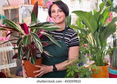 Portrait of positive smiling female florist arranging a calathea flower in the gardening department