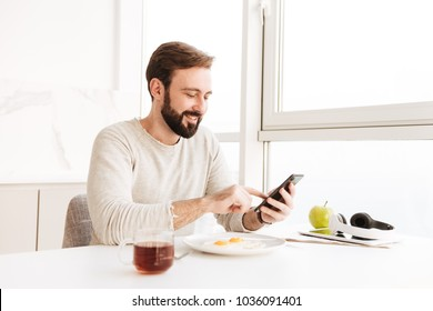 Portrait of positive unshaved man in casual shirt having healthy meal with frying eggs in apartment while using smartphone