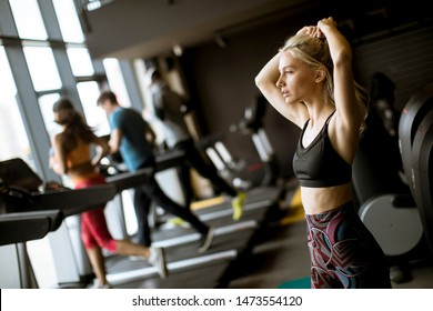 Portrait of pretty young woman standing in the gym