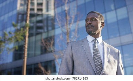 Portrait of professional male business man with space for text