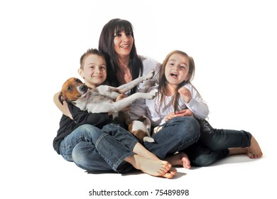 portrait of a puppy purebred jack russel terrier and family on a white background