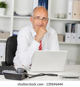 portrait of reliable businessman with hand on chin