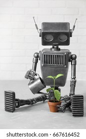 Portrait of the robot which is looking after a plant