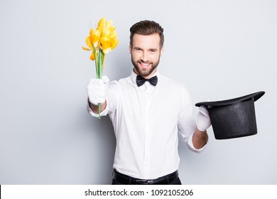 Portrait of romantic positive magician with bristle and modern hairstyle getting a yellow flowers from tophat and giving it front, isolated on grey background