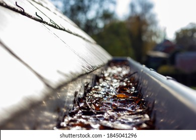 A portrait of a roof gutter clogged by many fallen fall leaves hanging from a slate roof. This is a typical annual chore during or after autumn to clean the gutter.