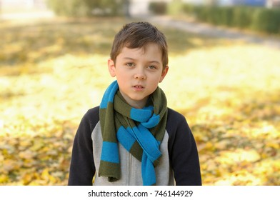 Portrait of a school-aged boy standing on a background of yellow autumn foliage. A long scarf is tied around the boy's neck