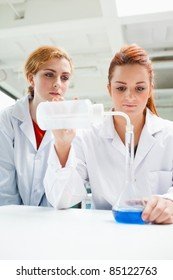 Portrait of scientists doing an experiment in a laboratory