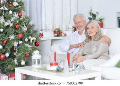 Portrait of a senior couple celebrating Christmas