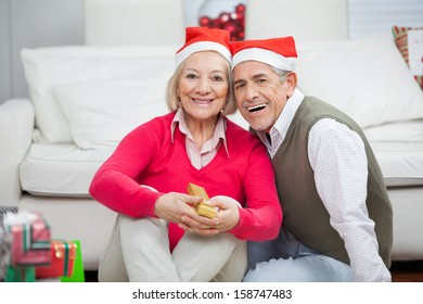 Portrait of senior couple wearing Santa hats smiling together at home