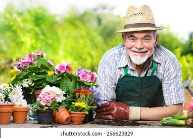 Portrait of senior man in the flower garden