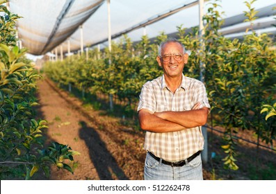 Portrait of senior man in his orchard.