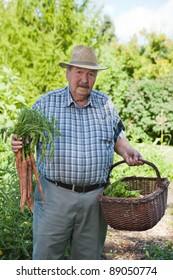 Portrait of senior man holding carrots in garden