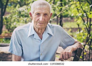 portrait of senior man sits in the garden and looks at the camera