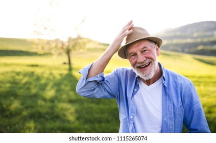 Portrait of a senior man in spring nature. Copy space.
