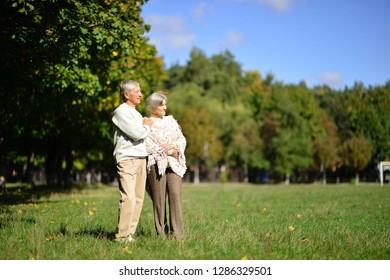 Portrait of senior pair in park at sunset