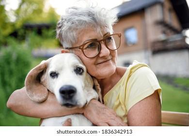 Portrait of senior woman sitting outdoors in garden, holding pet dog.