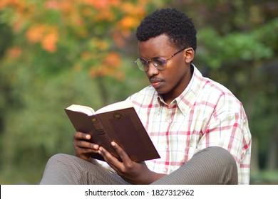 Portrait von seriösem, konzentriertem jungen afrikanischen Intelligenz-Mann, Schüler in Brillen und Hemd lesen ein Buch im goldenen Herbstpark