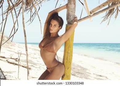 Portrait of sexy and beautiful woman wearing beige bikini on the wild beach