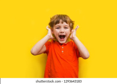 portrait the shouting child on a yellow background. emotions concept .