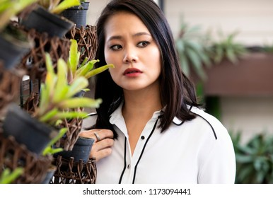 Portrait of a Singaporean young business woman near some plants