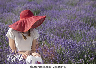 Portrait of sitting woman in the field of blossoming lavender