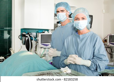 A portrait of a small animal surgeon and assistant
