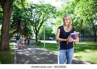 Portrait of smiling college girl holding book while her friends walking in background