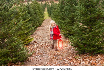 Portrait of smiling little girl walking with lantern on path among fir trees in winter