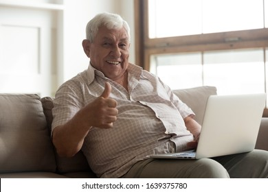 Portrait of smiling mature man sit relax on couch using modern laptop show thumbs up for easy technology usage, happy senior male recommend good quality technology working on computer