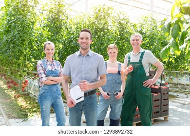 Portrait of smiling supervisor and farmers standing against tomato cultivation